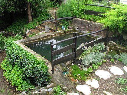 Au jardin de la source environnement jardin plantes flore fleurs r seau g tes jardins - Bassin carre bois mulhouse ...